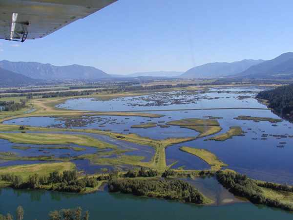 Kootenay_River_Marshes_in_the_Creston_Valley_Wildlife_Management_Area_