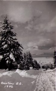 1946 Snowstorm 3 (1)