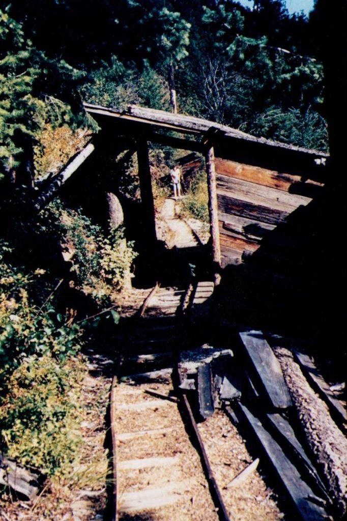 Sanca Gold Rush, near Creston BC