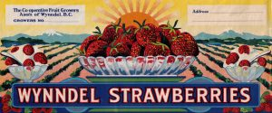Wynndel BC Strawberries fruit label